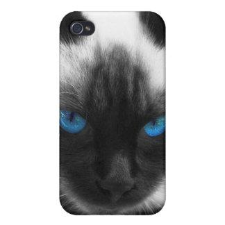 Siamese Cat iPhone 4 Covers