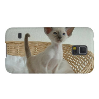 Siamese Cat Pet Purr Meow Kitty Destiny Galaxy S5 Cases