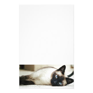Siamese Cat Pet Stationery Design