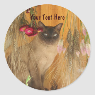 Siamese Cat Posing Animal Photography Sticker #3