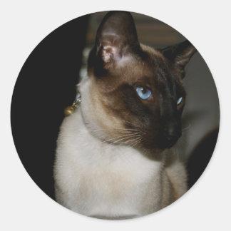 Siamese  Cat  Stickers