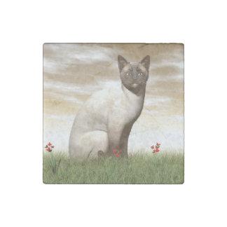 Siamese cat stone magnets