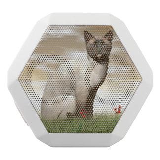 Siamese cat white bluetooth speaker
