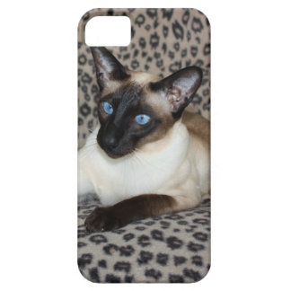 Siamese Cat with Leopard Print Wild Animal Spots iPhone 5 Cases