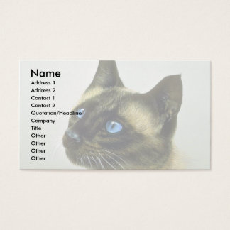 Siamese (head study) business card