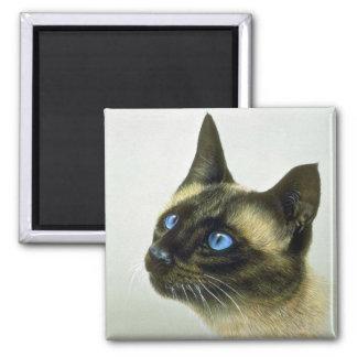 Siamese (head study) magnet