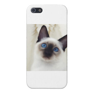 Siamese Kitten Case For The iPhone 5