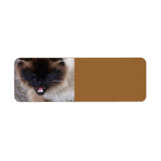 Siamese Persian Kitty Cat  Avery Label Return Address Label