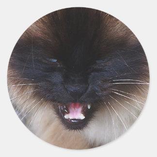 Siamese Persian Kitty Cat Sticker