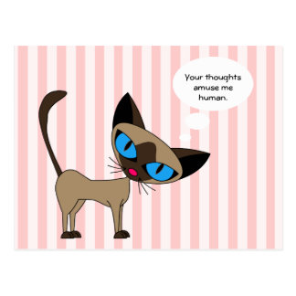 Siamese - Your Thoughts Amuse Me Human - Postcard