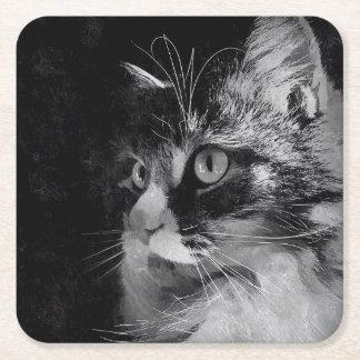 Siberian Cat Coasters