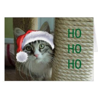 Siberian Cat Holiday Greetings Card