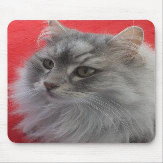 Siberian Cat Mousepad