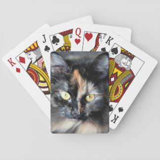 Siberian Cat Playing Cards