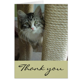 Siberian Cat Thank You Note Cards
