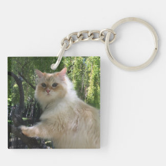 Siberian Forest Cat (Double Sided) Keychain