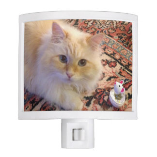 Siberian Forest Cat & Toy Night Light