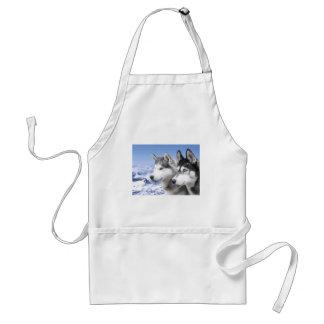 Siberian Huskies Aprons