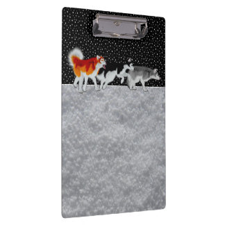Siberian Huskies in Snow on Clip Board