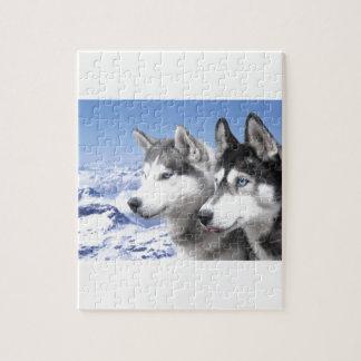 Siberian Huskies Jigsaw Puzzle