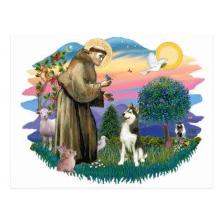 Siberian Husky (#3) Postcard
