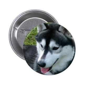 Siberian Husky Button
