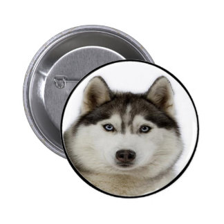 """Siberian Husky"" 2 Inch Round Button"