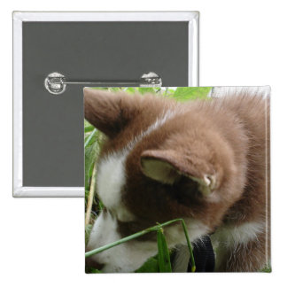 Siberian Husky Buttons