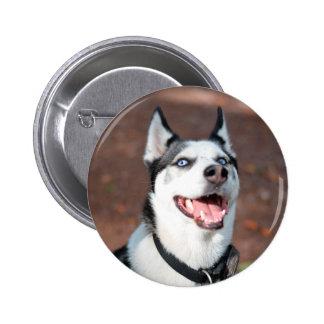 Siberian Husky dog blue eyes 2 Inch Round Button