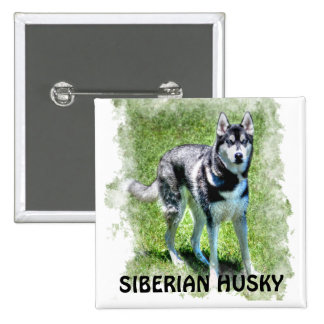 Siberian Husky Dog-lover's Pet Gift Series 2 Inch Square Button