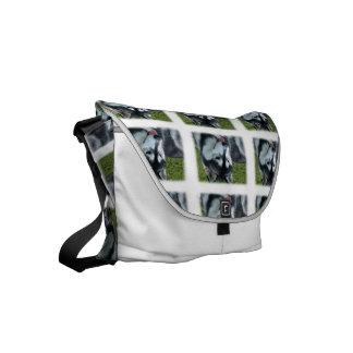 Siberian Husky Dog Messenger Bag