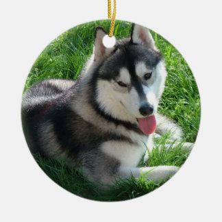 Siberian Husky Dog Ornament