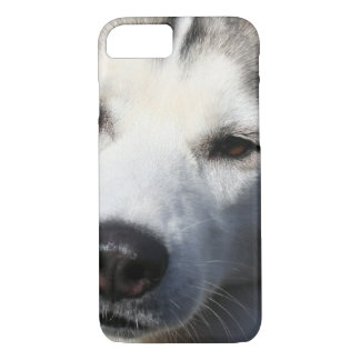 Siberian Husky Dog Photo iPhone 8/7 Case