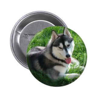 Siberian Husky Dog Round Pin