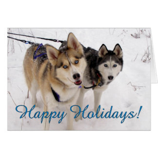 Siberian Husky Holiday Card