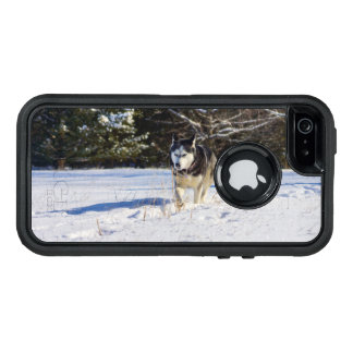 Siberian Husky In The Snow OtterBox iPhone 5/5s/SE Case