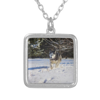 Siberian Husky In The Snow Square Pendant Necklace
