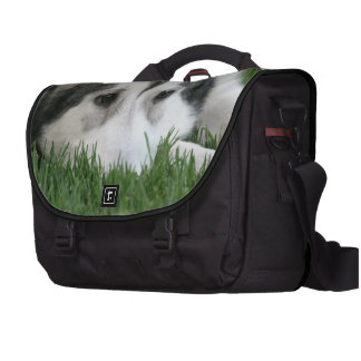 Siberian Husky Bag For Laptop