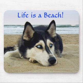 Siberian Husky Life is a Beach Mousepad