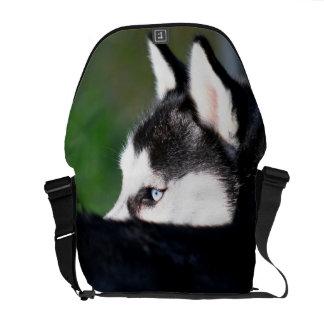 Siberian Husky Messenger Bags