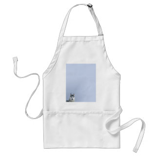 Siberian Husky on Blue Background Apron