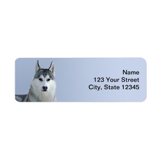 Siberian Husky on Blue Background Return Address Label