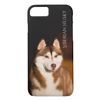 Siberian Husky Phone Case