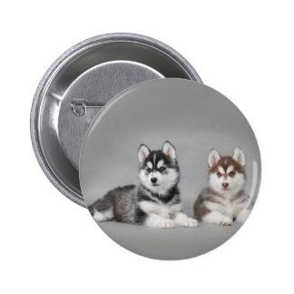 Siberian husky puppies 2 inch round button