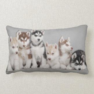 Siberian Husky Puppies on Throw Pillow