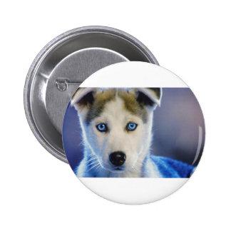 Siberian Husky Puppy Pinback Button