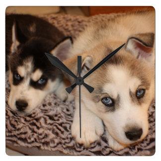 Siberian Husky Puppy Clock