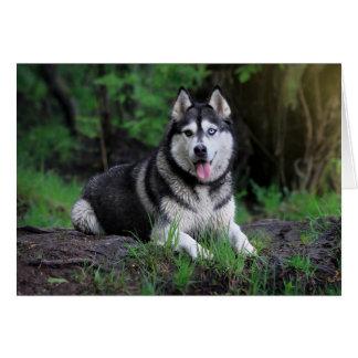 Siberian Husky Puppy Dog - Hello, love, Thank You, Card