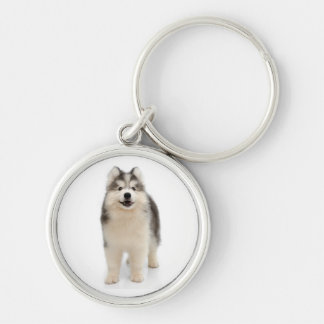 Siberian Husky Puppy Gray, Black & Cream Dog Silver-Colored Round Keychain