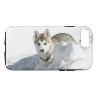 Siberian Husky Puppy in snow Case-Mate iPhone Case